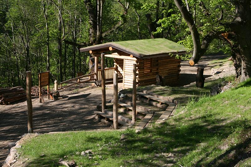 Castagneto didattico del Consorzio forestale Valle Allione