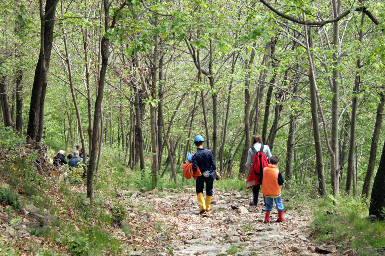 Escursione in Valcamonica